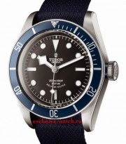 Tudor Black Bay 79220B